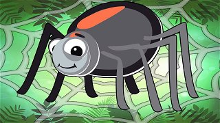 Itsy Bitsy Spider - Songs For Kids | Nursery Rhymes